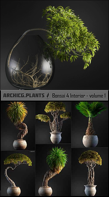 [Max] ArchiCG Plants Bonsai 4 Interior Volume 1
