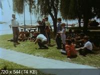 Заколдованный доллар / Az elvarazsolt dollar (1985) DVDRip