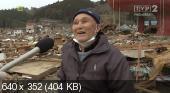 Japonia: Kataklizm Jakiego Nie By³o (2011) PL.PDTV.XviD-P2P