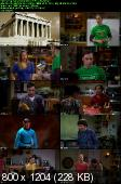 The Big Bang Theory [S05E20] HDTV.XviD-FQM