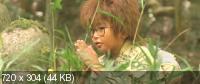 Дети-ниндзя / Nintama Rantaro (2011) DVDRip