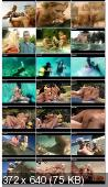 Секс на морском дне / Get Soaking Wet! (2011/DVDRip/The Best By Private 166)