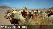 IMAX Аравия / IMAX Arabia (2011) 720p BDRip