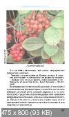 http://i33.fastpic.ru/thumb/2013/0331/0e/eec802741b21a38e7a0f76d3f6c2a10e.jpeg