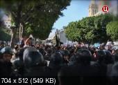 Арабская весна. Революция была ошибкой? (2013) IPTVRip