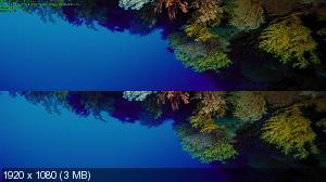 http://i33.fastpic.ru/thumb/2013/0425/05/b36dc1687525e532b628fa98eefa3f05.jpeg