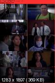 Greys Anatomy [S09E21] HDTV XviD-AFG