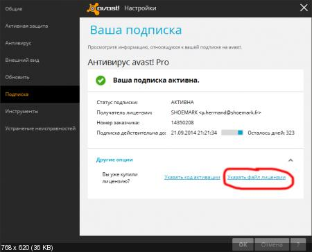 Avast Pro Antivirus 2014 ����