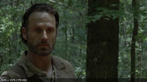 Ходячие мертвецы / The Walking Dead (2013) S04E01-10 1080p WEB-DL