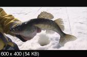 Рыбачьте с нами. Видеоприложение. Выпуск №55. Март 2014
