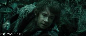 Хоббит: Пустошь Смауга / The Hobbit: The Desolation of Smaug  (2013) BDRip | Sub