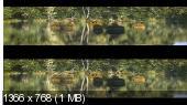 Прогулки с динозаврами 3D / Walking with Dinosaurs 3D (2013) 3D (HOU) BDRip 1080p / 8.21 Gb [Half OverUnder / Вертикальная анаморфная стереопара]