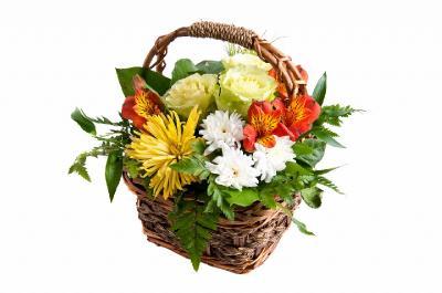Поздравляем с Днем Рождения Светлану (svetlanka) 3d397d509ed0b38d8c2df17d9534757c