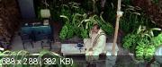 Новый волшебный мир (2008) DVDRip