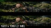 Xoббит: Пyстoшь Cмаyга в 3Д / The Ноbbit: The Dеsolаtion of Smаug 3D (2013) / 11.5 Gb [Half OverUnder / Вертикальная анаморфная стереопара]
